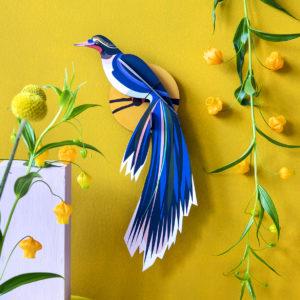 deco ambiance plumes oiseau coloré