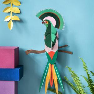 oiseau vert plumes coloré