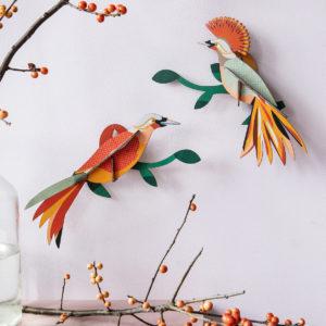 oiseaux branches colorés petits